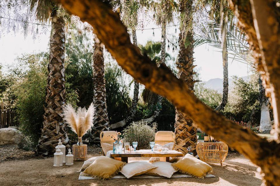 A picnic with rattan chairs, pillows, a table and other accessories in a woody outdoor space.